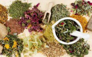 Какие травы входят в монастырский чай отца Георгия