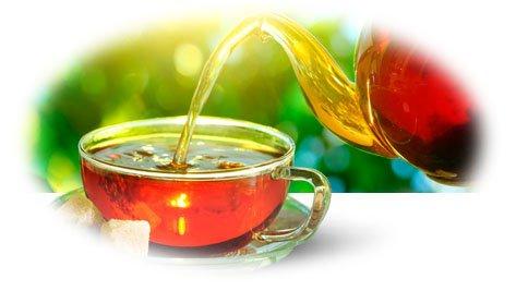 Как приготовить монастырский чай в домашних условиях для лечения жкт