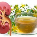 Монастырский сбор почечный для лечения заболеваний мочевыделительной системы