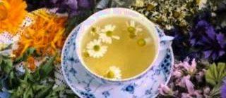 Монастырский чай как принимать и от каких заболеваний