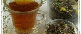 Монастырский чай для печени состав в домашних условиях