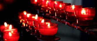Тибетский сбор купить киев