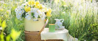 Монастырский чай правда или развод от алкоголизма