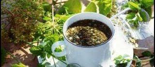 Какие травы входят в состав монастырского чая для поджелудочной